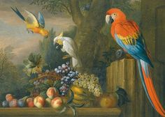 Still Life with Parrots, Cockatoo and Fruit by Jakob Bogdony