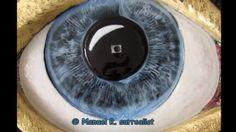 Surreal stone- glass sculpture by Manuel R. surrealist d.45x60x15cm http://adobe.ly/1LY4Sup http://1drv.ms/1WK8s2S https://picasaweb.google.com/107126186716150763285/TheEyeOfSelfie2015#slideshow/6198885829551990322  https://plus.google.com/+ManuelMykonossurrealist/posts/aMXr7BiZQXV https://sites.google.com/site/manuelsurrealist/ http://www.manuelmykonos.com