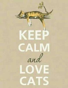 Keep Calm Cats