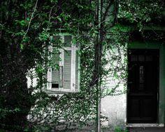 Olhares.com Fotografia | �Sidney Ganho | House