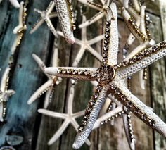 watch the video to make this Sea Star Chandelier on youtube, Debi's Design Diary