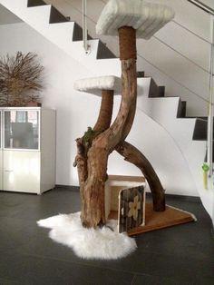Selbst gebauter Kratzbaum aus altem Baumstamm, mit Kunstfell und Kuscheldecke…