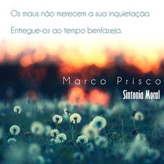Marco Prisco