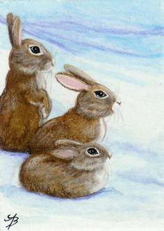 """Rabbits in the Snow"" par AmyLyn Bihrle"