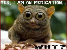 on medication funny quotes quote lol More