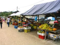 San Ignacio Belize | BELMOPAN - Off Western Highway - Good stop for weekdays at Lunch time. Exotic Plants, Caribbean Sea, Lunch Time, Central America, Belize, Places To Travel, Countries, Marketing, Heart