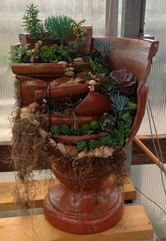 Broken pot- great way to use my succulents