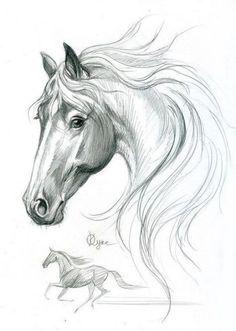 Art sketches pencil horse 65 Ideas for 2019 Horse Pencil Drawing, Horse Drawings, Pencil Art Drawings, Art Drawings Sketches, Animal Drawings, Drawing Animals, Horse Sketch, Horse Artwork, Animal Sketches