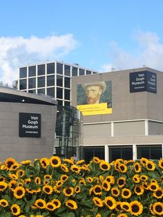 I have just returned from 3 days in Amsterdam where I enjoyed a visit to the Van Gogh Museum. Banks of cut sunflowers (and long queues!) led the way to the entrance (left) I am honoured that one of…