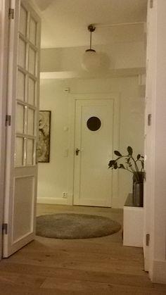 Eteinen ja uusi vessan ovi vestibule