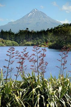 Travel Inspiration for New Zealand - Lake Mangamahoe, Taranaki, New Zealand.  Photo: geoftheref, via Flickr