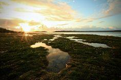 Beautiful evening sunset at Falcarragh strand county Donegal Ireland Evening Sunset, Ireland Landscape, Donegal, Landscape Photos, Landscapes, River, Outdoor, Beautiful, Paisajes
