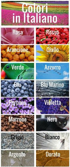 Beginner's Introduction to Italian Colors (Infographic) : Learning Italian colors is a great way to expand your vocabulary. Check out our easy guide to learning Italian colors and their proper pronunciation. Italian Grammar, Italian Vocabulary, Italian Phrases, Italian Words, Italian Life, Basic Italian, Language Study, Learn A New Language, Spanish Language