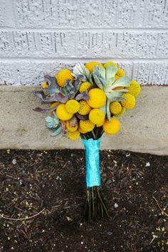 succulent drumstick billy ball bouquet yellow aqua gray bridal bouquet studio stems utah wedding flowers Carly there's those Billy Balls again! Aqua Wedding, Fall Wedding Flowers, Flower Crown Wedding, Fall Wedding Colors, Trendy Wedding, Wedding Bouquets, Yellow Weddings, Bridesmaid Bouquets, Wedding Notes