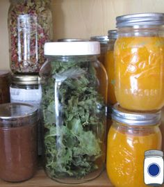 Kitchen Pantry: Signs of Spoilage In Your Food Storage