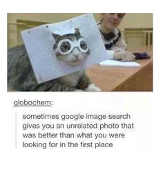 Tumblr, humour, funny, lol, haha, chat post, text post