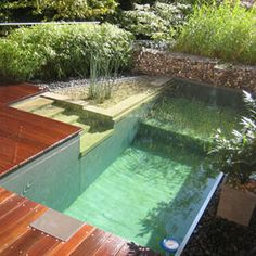 natural swimming pools -biological filters