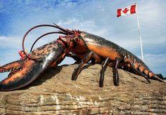 World's Largest Lobster in Shediac, New Brunswick.