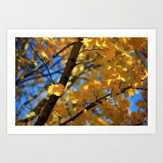 Autumn colours Art Print by Annie Japaud   - $18.72 Autumn Colours, Annie, Art Prints, Image, Art Impressions