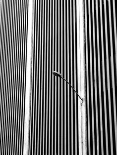stripe city