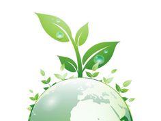 organicantalya.com