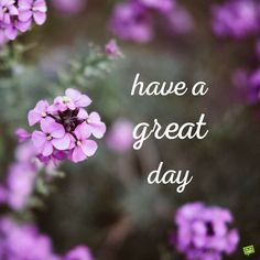 Have a great day Good Morning Cards, Good Morning Picture, Good Morning Flowers, Good Morning Messages, Good Morning Good Night, Morning Pictures, Good Morning Wishes, Good Morning Images, Good Morning Quotes