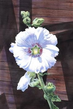 FENCE ROW HOLLYHOCK flower watercolor painting by artist Barbara Fox