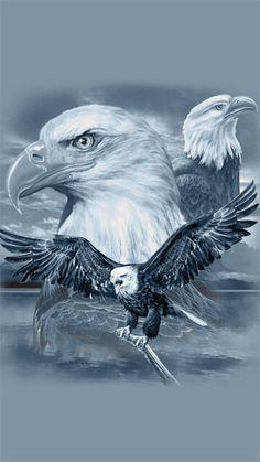 Eagle Images, Eagle Pictures, Eagle Drawing, Eagle Wallpaper, Eagle Painting, Eagle Lake, Wings Like Eagles, Eagle Tattoos, Moon Photography