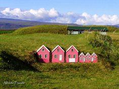 Elves houses, Iceland