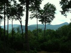 Beautiful home for sale in Sapphire, NC-Just look at the view!!