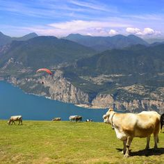 Monte Baldo - Travel and Fashion Tips by Anna Pernice