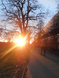 Sunset at Fulham Park, 2.2.2013    http://analogueboyinadigitalworld.wordpress.com/2013/02/05/london/