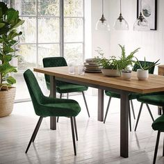 This fresh green dining room can be created with pieces from our Spring collections - see Arboretum faux foliage, Alfa green velvet chairs and Foundry rustic dining table Image spotted Green Dining Room, Interior Styling, Interior Design, Dining Chairs, Dining Table, Faux Plants, Scandi Style, Fresh Green, Green Velvet