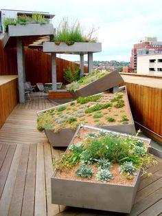 grandes jardinières en ciment de formes originales sur le toit-terrasse