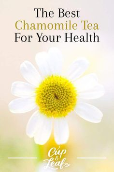 Some chamomile teas are better than others. We'll show you how to identify the best chamomile tea so you can reap all the health benefits of this sweet drink. Herbs For Health, Health And Wellness, Tea Benefits, Health Benefits, Herbs For Sleep, Lemon Balm Tea, Homemade Tea, Hibiscus Tea, Detox Tips