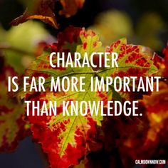 """Character is far more important than knowledge.""  Inspiring #quotes #images and #affirmations by Calm Down Now, an anti-anxiety mobile app. http://cal.ms/12kuZsX"