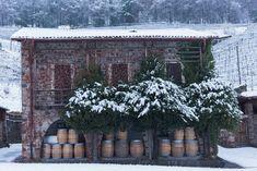 Image de Swiss Wine Promotion Oeuvre D'art, Les Oeuvres, Promotion, House Styles, Image, Decor, Switzerland, Decoration, Decorating