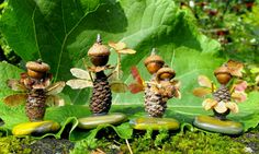 fairy gardens, autumn  | Twig and Toadstool: Woodland Fairy Folk