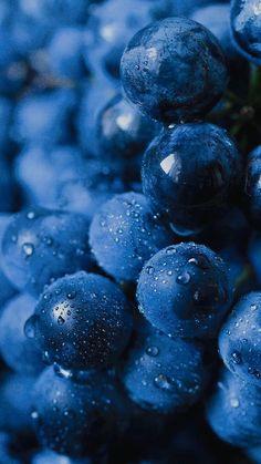 bilberry, dessert, and food imageの画像 Aesthetic Objects, Aesthetic Colors, Aesthetic Collage, Aesthetic Pictures, Aesthetic Backgrounds, Aesthetic Wallpapers, Blue Aesthetic Dark, Photo Bleu, Bleu Pastel