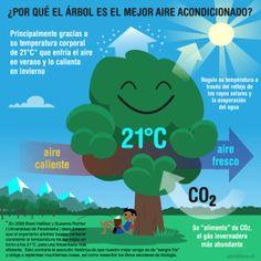 ¿Cuál es el mejor aire acondicionado? La última gran verdad