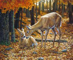 """""""Autumn Innocence 2"""""""