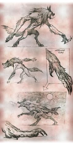 The province of Kessig consists of rolling farmlands surrounded by grasping fingers of dense, dark woods. The woods hide werewolves, ghosts, and other supernatural menaces, while the farmlands support a hardscrabble rural livelihood for Kessig's humans.