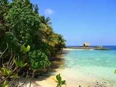 Photo by Andrew Harruson. Maldives