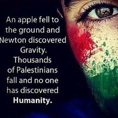 Wow nataliaclavier:  #FREEPalestine. supportGaza