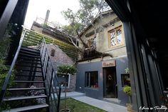 【台中】中興一巷綠光計畫。Isabella's Cafe | 攝影‧旅行‧拈花惹草→Morris