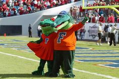 Mr & Mrs Gators
