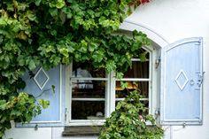 Окна, Фасад, Завод, Цветок, Врастающий, Плющ, Hauswand