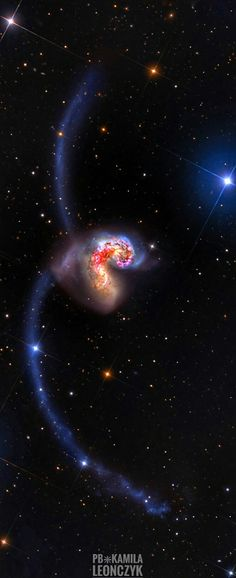 Some 60 million light-years away in the southerlyconstellation Corvus, two large galaxies are colliding. Stars in the two galaxies, cataloged as NGC 4038 and NGC very rarely collide in the course of the ponderous cataclysm that lasts for hundreds of Hubble Pictures, Hubble Images, Cosmos, Hubble Space Telescope, Space And Astronomy, Astronomy Science, Galaxy Space, Galaxy Art, Outer Space