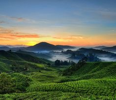 Unfortunately we didn't get to experience a clear view like this while we were in the Cameron Highlands... We have a picture from a similar location but unfortunately the haze gives it a really foggy look.