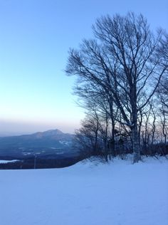 Went skiing yesterday!